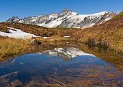 Forbidden Peak reflects in a tarn on Sahale Arm in North Cascades National Park, Washington, USA.