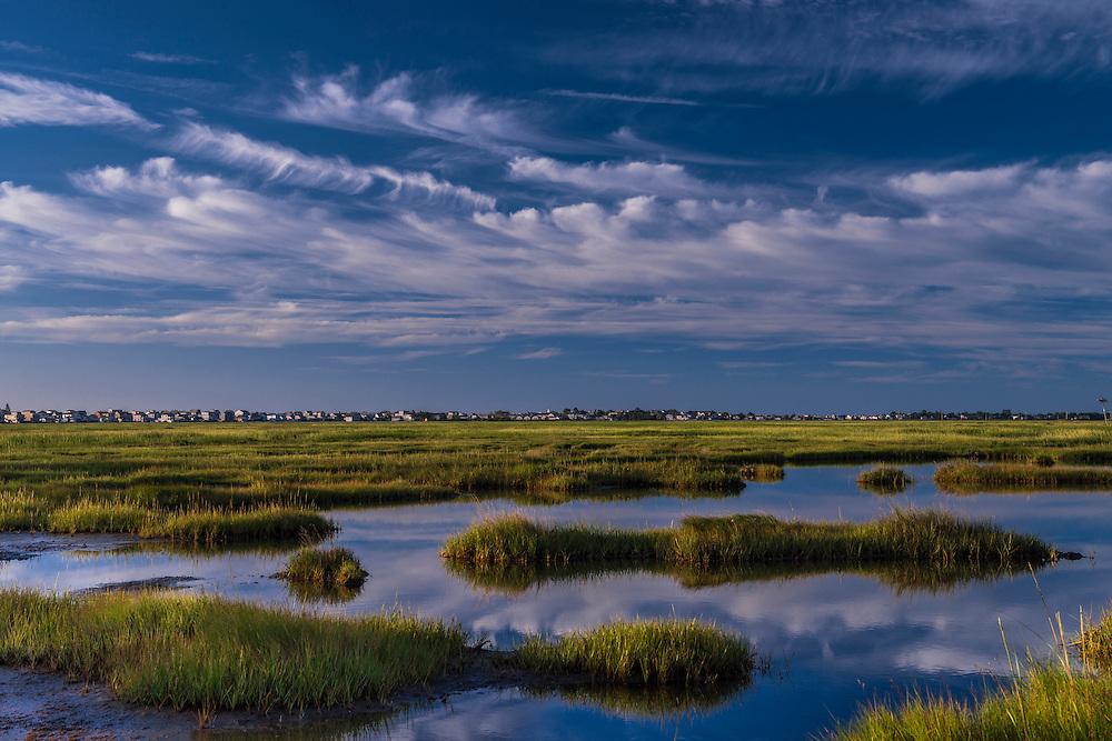 Rachel Carson National Wildlife Refuge, marsh and grasses in summer, Wells, ME