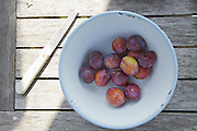 Plums from the orchard, part of lunch in the back garden with fruit and vegetables from the farm at Hares Farm CREDIT: Vanessa Berberian for The Wall Street Journal<br /> UKFARM-Hares Farm