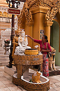 Pilgrims pay tribute to the Budha of the day of the they were born, in the Shwedagon Pagoda, the Golden Pagoda is the most sacret pagoda in Myanmar, Yangon, Burma.<br /> Note: These images are not distributed or sold in Portugal