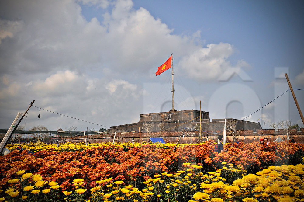 A young Vietnamese couple poses among a vast flower field outside the citadel of Hue, Vietnam, Southeast Asia