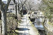 Japan, Kyoto, Ginkaku-ji (Jish?-ji or Temple of the Silver Pavilion) Zen Buddhist temple, Cherry blossoms