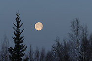 December's full Moon has traditionally been known as the Full Cold Moon by some Native Americans tribes since this is the month that heralds in the cold winter season.
