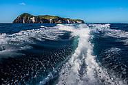 2020 Mokohinau Islands EMR snorkelling trip