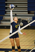 Milpitas senior Pilar Ferguson (11) spikes the ball against Monta Vista High School on Sept. 10, 2012.  Milpitas would go on to lose in 4 sets, 7-25, 16-25, INSERT SCORE, 17-25.  Photo by Stan Olszewski/SOSKIphoto.