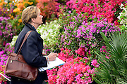 © Licensed to London News Pictures. 20/05/2013. London, UK A woman looks at a colourful display. Press day at Chelsea Flower Show 2013. The centenary edition of the show attracts large number of visitors and is already sold out before opening day. Photo credit : Stephen Simpson/LNP