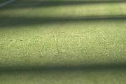 Fussball: International Friendly, 125 years, Hamburger SV - FC Barcelona 1:2, Hamburg, 24.07.2012<br /> Illustration, Shaddow, Field<br /> © Torsten Helmke