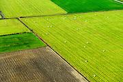 Nederland, Zeeland, Gemeente Borsele, 19-10-2014;  Zak van Zuid-Beveland, omgeving 's Gravenpolder. Kleinschalig landschap van binnendijken en kleine polders, 'oudland'. Akkers en grasland  met gekuild gras.<br /> Old Polders and grassland, Zealand, Southwest Netherlands.<br /> luchtfoto (toeslag op standard tarieven);<br /> aerial photo (additional fee required);<br /> copyright foto/photo Siebe Swart