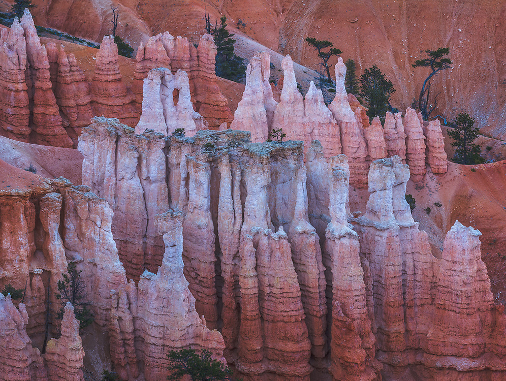 The limestone rock layer that forms the hoodoos of Bryce Canyon is about 30-40 million years old.
