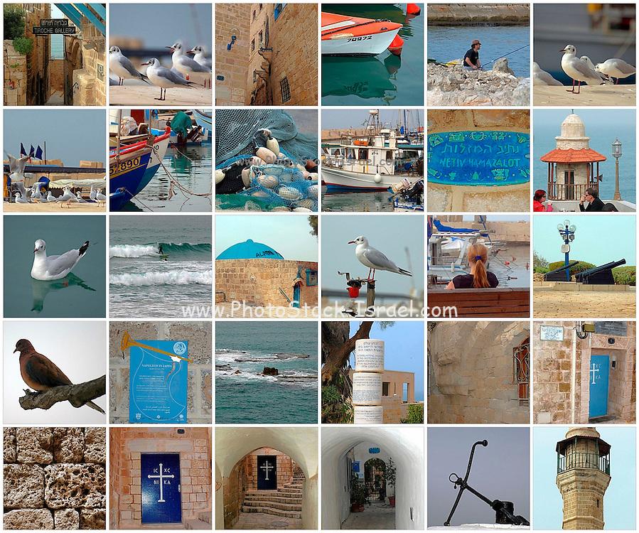 30 image collage of Jaffa, Israel