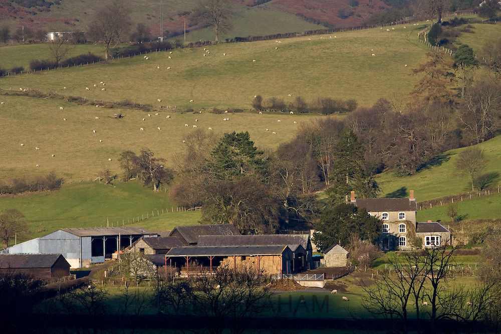 Farm buildings in the Black Mountains, Powys, Wales, United Kingdom