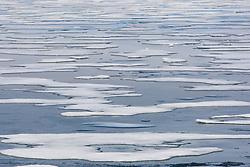 Thin ice around Svalbard late summer