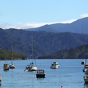 Waikawa Bay near Picton.  Waikawa is the home of New Zealand's 3rd largest Marina only minutes away from  Queen Charlotte Sounds near Picton at the top of the South Island of New Zealand,  28th January 2011. Photo Tim Clayton.