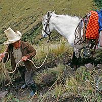 "A horseman descends a muddy trail through ""halka"" grasslands."