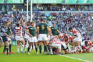 Japan players celebrate after a try by Japan's Captain Michael Leitch during the Rugby World Cup Pool B match between South Africa and Japan at the Community Stadium, Brighton and Hove, England on 19 September 2015. Photo by Phil Duncan.