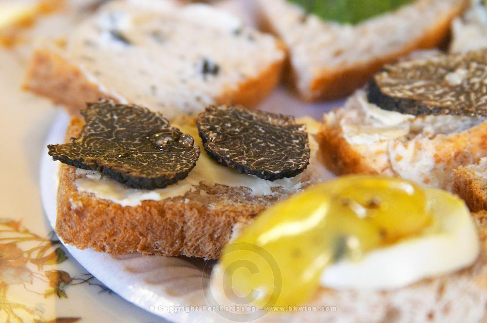 Appetizers made with truffles: small pieces of bread with truffles butter, slices of fresh black truffles, egg with truffles mayonnaise, zucchini squash with truffles... Truffiere de la Bergerie (Truffière) truffles farm Ste Foy de Longas Dordogne France