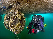 KISS Spirit rebreather diver on the site of the Aircraft Challenger 600 landing gear at Dutch Springs, Scuba Diving Resort in Pennsylvania