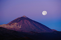 Full moon and sunrise in the Teide volcano (the highest mountain of Spain, 3.718 m), at sunrise. Teide National Park, Tenerife Island, Canary Islands, Spain.