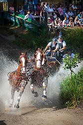 Geerts Glenn (BEL)<br /> World Championship Four in Hand - Riesenbeck 2012<br /> © Hippo Foto - Remco Veurink