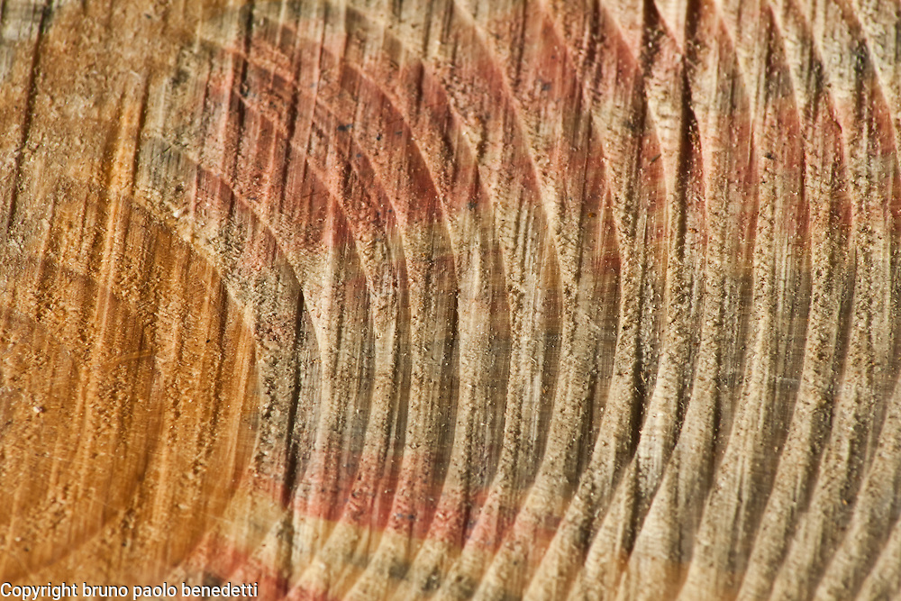 vibrations rising from brown dappled center expanding to right in colored semicircle waves. Brown, red and green shades, dappled texture.
