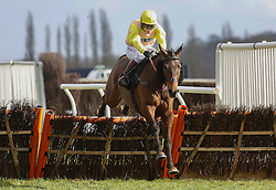 Hello George ridden by Richard Johnson clears the last flight before going on to win The William Hill 'High 5' Supporting Greatwood Seniors' Handicap Hurdle Race run at Newbury Racecourse.