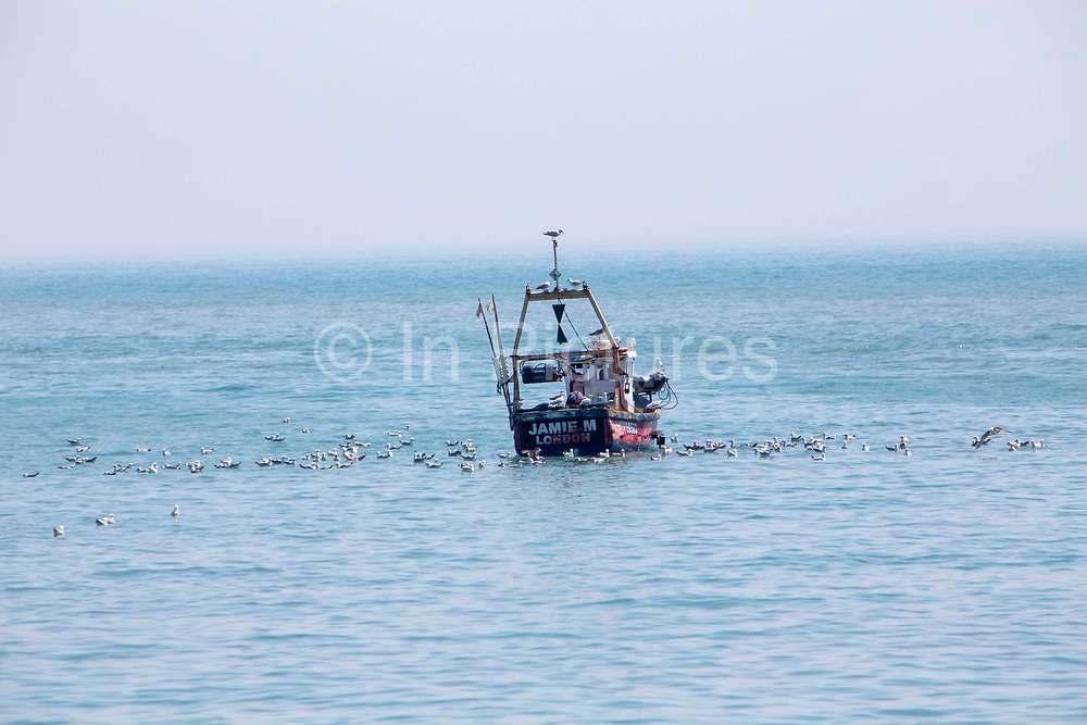 A British fishing boat Jamie M LO583 surrounded by seagulls arriving back into Folkestone Harbour after inshore trawling in the English Channel on the 21st of May 2020, Folkestone, United Kingdom.