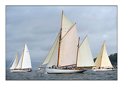 The final day of racing of the Fife Regatta on the King's Course North of Great Cumbrae<br /> <br /> Astor, Richard Straman, USA, Schooner, Wm Fife 3rd, 1923, Kentra, E & D Klaus, GBR, Gaff Ketch, Wm Fife 3rd, 1923, Solway Maid, Roger Sandiford, GBR, Bermudan Cutter, Wm Fife 3rd, 1940<br /> <br /> * The William Fife designed Yachts return to the birthplace of these historic yachts, the Scotland's pre-eminent yacht designer and builder for the 4th Fife Regatta on the Clyde 28th June–5th July 2013<br /> <br /> More information is available on the website: www.fiferegatta.com