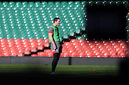 George North of Wales  during the Wales rugby team captains run at the Millennium Stadium, Cardiff, South Wales on Thursday 20th Feb 2014. pic by Andrew Orchard, Andrew Orchard sports photography.