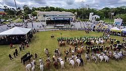 Desfile dos campeões durante a Inauguração oficial 38ª Expointer, que ocorre entre 29 de agosto e 06 de setembro de 2015 no Parque de Exposições Assis Brasil, em Esteio. FOTO: Luis Adriano Madruga/ Agência Preview