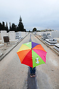 colorfull Umbrella at the Kiryat shaul cemetery