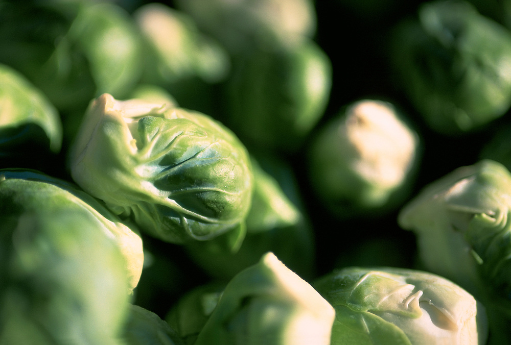 Close up selective focus photograph of a bunch of Brussel Sprouts