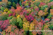 64776-02106 Aerial view of Hugoboom Lake in fall color Alger Co. MI