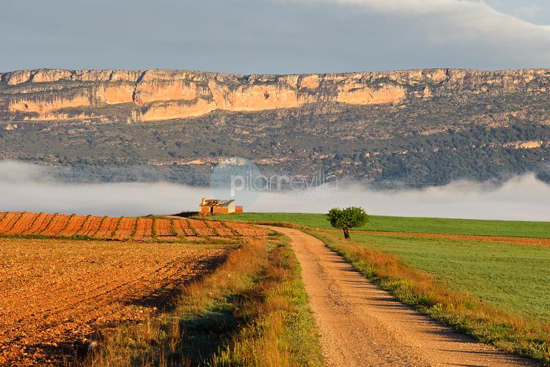 Camino rural. Sierra de El Mugrón. Almansa. Albacete ©Antonio Real Hurtado / PILAR REVILLA