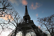 Looking up at the Eiffel Tower, Paris