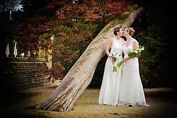 Brides kissing by a wonky tree in the stunning grounds at Eynsham Hall in Oxfordshire
