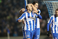 Brighton and Hove Albion v Fulham 261116