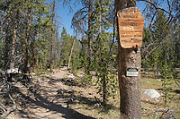 Bridger Wilderness trail sign on Pole Creek Trail, Wind River Range Wyoming