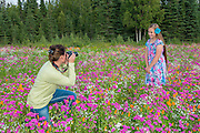 A mother and her daughter snap photos in the field of beautiful flowers planted by the City of Kenai. PLEASE CONTACT US FOR DIGITAL DOWNLOAD AND PRICING.