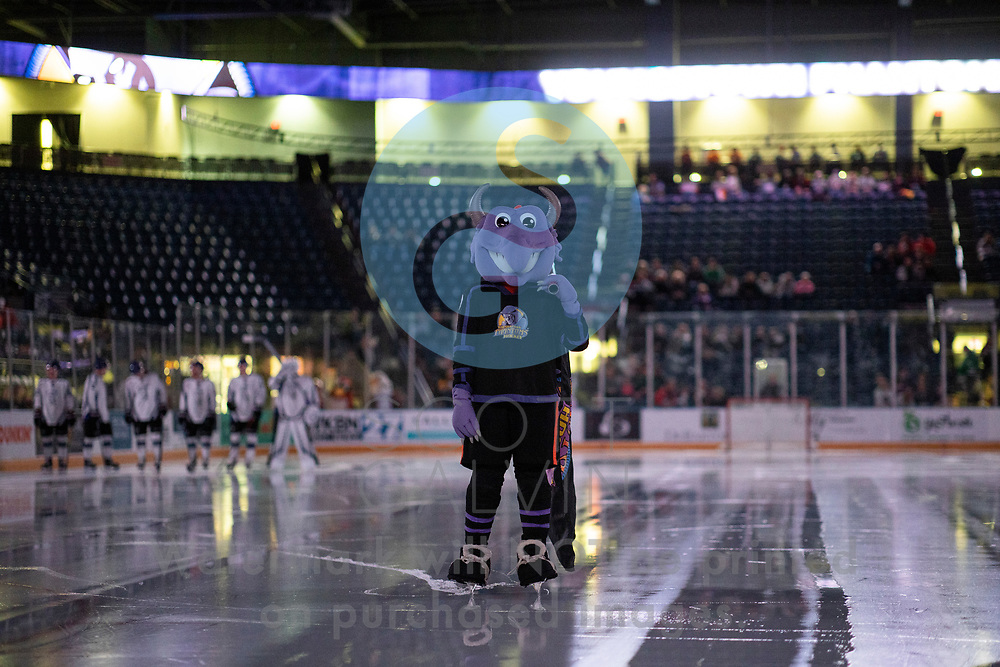 Youngstown Phantoms lose 4-1 to the Tri-City Storm at the Covelli Centre on January 17, 2020.<br /> <br /> Sparky