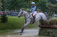 FAERIE DIANIMO ridden by Jonelle Price who came third in the Event Riders Masters CIC*** at Bramham International Horse Trials 2016 at  at Bramham Park, Bramham, United Kingdom on 11 June 2016. Photo by Mark P Doherty.