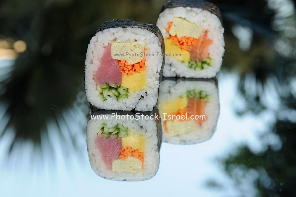 Tuna and Salmon Sushi Futo Maki
