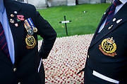 Two serving soldiers in civilian suits but wearing the insignia and badges of the Royal Military Police (RMP), talk quietly together while poignantly paying their respects to the hundreds of markers that symbolise war dead. Crosses and poppies mark anonymous fallen British soldiers and other servicemen and women, all killed during recent conflicts. Dedications from loved-ones or simply well-wishers are written on the wooden crosses on the weekend that Britain commemorates those killed on active service in trouble spots and war locations around the world, the markers a laid on the grass of Westminster Abbey's lawns on Parliament Square, opposite the Houses of Parliament. Armistice weekend is largely held on the closest Sunday to the 11th hour of the 11th Day of the 11th Month, when hostilities famously ended in on 11th November 1918.