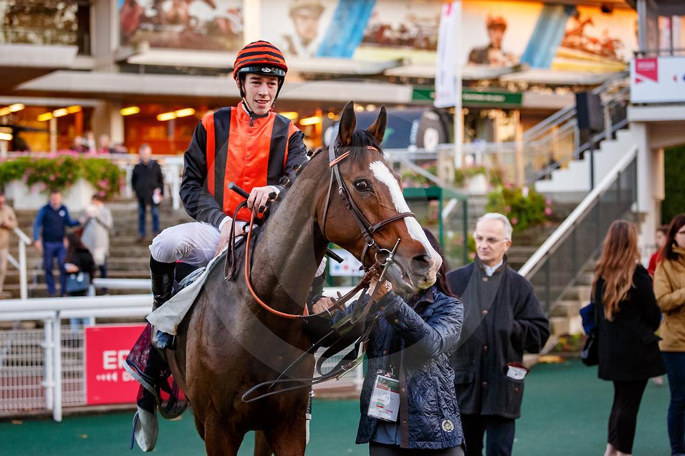 Sun Zephir (N. Gauffenic) wins Prix Le Bonbon Auteuil 05/11/2017, photo: Zuzanna Lupa