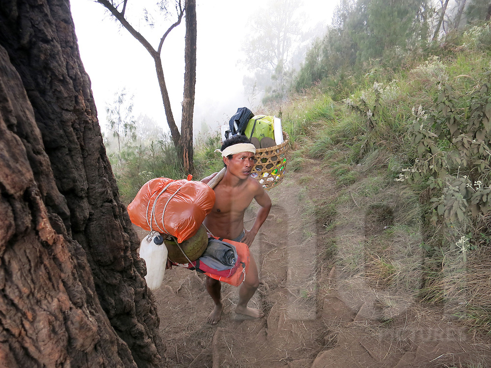 Sherpa climbs Mount Rinjani carrying a loaded yoke on the island of Lombok in Indonesia, Southeast Asia
