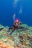 Yap, Micronesia. Shark, Manta Rays and diving at Manta Fest 2013.