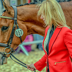 Alicia Hawker Badminton Horse trials England Uk May 2019. Alicia Hawker at the equestrian event Badminton horse trials May 2019 Being accepted and at the main event Badminton Horse trials 2019 Winner Piggy French wins the title