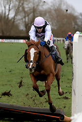 Poker Play ridden by Tom Scudamore crashes through a hurdle and wins the Marstons Pedigree Handicap Hurdle race at Uttoxeter Racecourse.