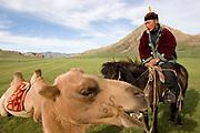 camel Horse and horse riding at Gun Galuut