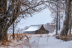 New snow, old barn. in an increasing metal barn world these old barns are a visual treat. Every once and a while I'll see someone building a wooden barn and I'm thankful to them for taking on the added expense adding to the rural landscape instead of subtracting from it.
