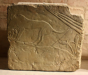 Hunting scenes ; two hounds are pulling a scimitar-horned Oryx. 18th dynasty 1540-1290 BC Limestone